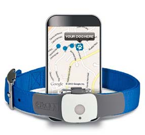 Dog GPS Tracker - Tagg Pet Tracker
