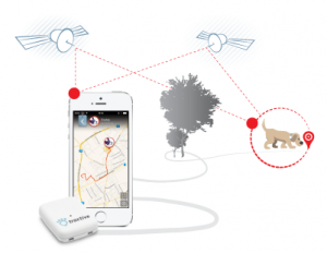 Dog GPS Tracker - Tracive GPS Tracking Device